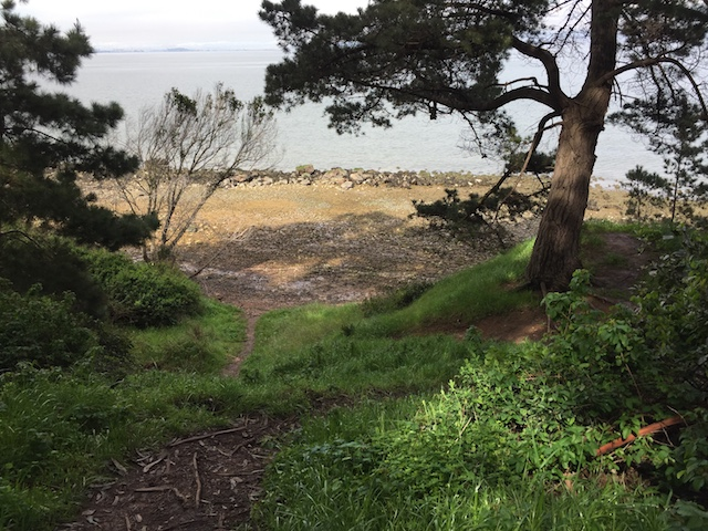 Saturday, June 24, 2017 – Coyote Point Recreation Area